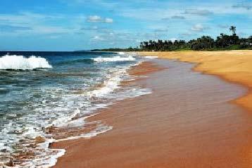 Sri Lanka zwiedzanie z biurem podróży. Poznaj najlepsze atrakcje